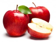 elevATP consists of plant-derived inorganic microelements and apple polyphenols