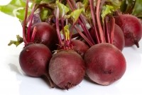 Demand rising rapidly for beetroot as ingredient's sports nutrition benefits are proven and popularized