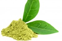 Green tea supplements may benefit skin from within