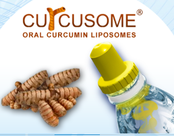 curcumin research papers