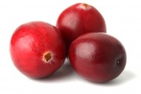 Fruit d'Or launches oral health cranberry powder to take ingredient 'beyond UTIs'