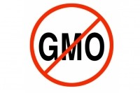 Expert foresees savvy supplement companies offering both GMO-free and 'made with GM technology' brands
