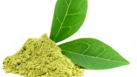 Link of green tea extracts to liver injury raises age old question: How much of a good thing is too much?