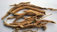 An herb to watch: Ashwagandha science growing consumer recognition and sales