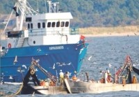 Omega Protein has had to drastically alter how it operates its fishing vessels because new visa restrictions have dried up its source of workers.  Omega Protein photo.