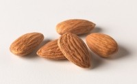 Tree nuts can improve glycemic control in type 2 diabetics