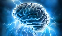 Magnesium L-threonate may boost memory, ease anxiety: animal data