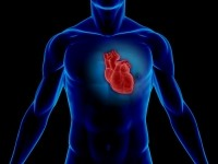 Emerging heart health ingredients