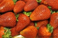 Strawberries show significant heart health benefits: Human data